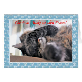 Christmas wake me when it s over Cat Christmas c Cards