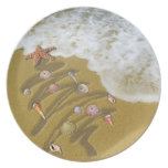 Christmas Washed Up on Shore Dinner Plates