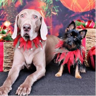 Christmas - Weimie Ben - YorkiePoo Stella Photo Cutout