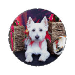 Christmas - Westie - Bella Jelly Belly Candy Tin