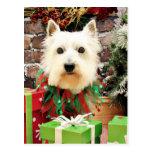 Christmas - Westie - Sammy Postcard