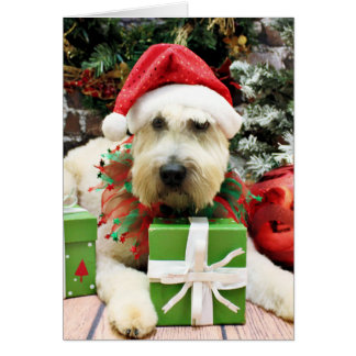 Christmas - Wheaten Terrier - Bailey Greeting Cards