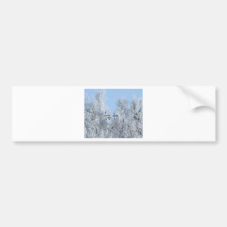 Christmas winter rural landscape birds bumper sticker
