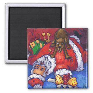Christmas Wish Fridge Magnets