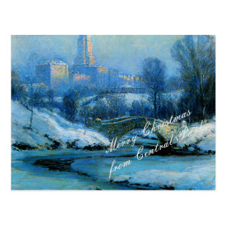 Christmas wishes from Central Park in WInter Postcard