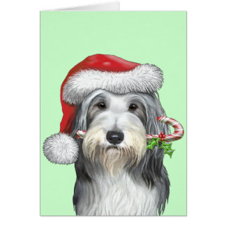Christmas With Jazz The Bearded Collie Card