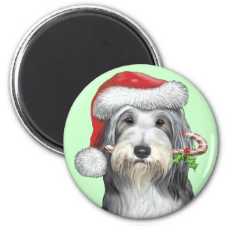 Christmas With Jazz The Bearded Collie Magnet