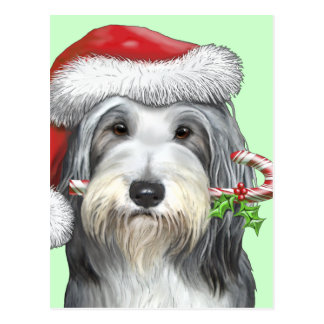 Christmas With Jazz The Bearded Collie Postcard