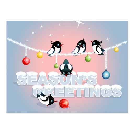 Christmas with Magpies, Bubbles, Snow Postcard