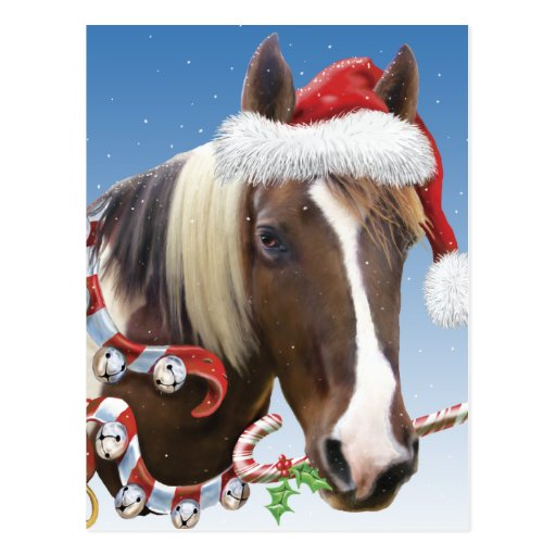Christmas With Rodger Postcard