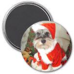 Christmas X'Mas Miniature Schnauzer 3 Inch Round Magnet