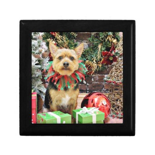 Christmas - Yorki X - Little Bit Trinket Boxes