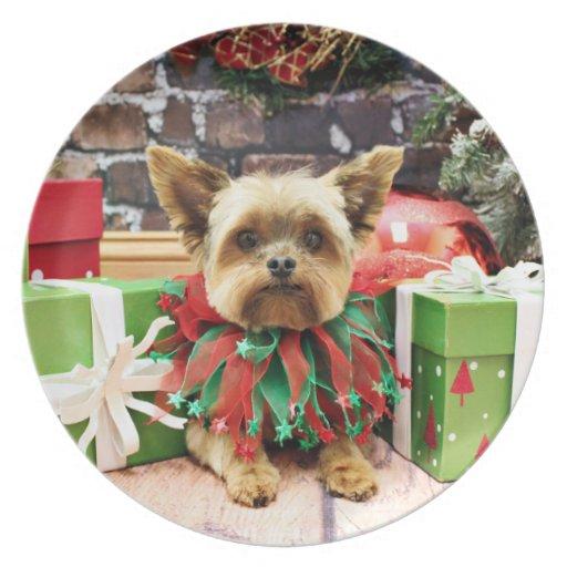 Christmas - Yorkie - Bentley Plate