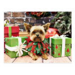 Christmas - Yorkie - Bentley Postcard