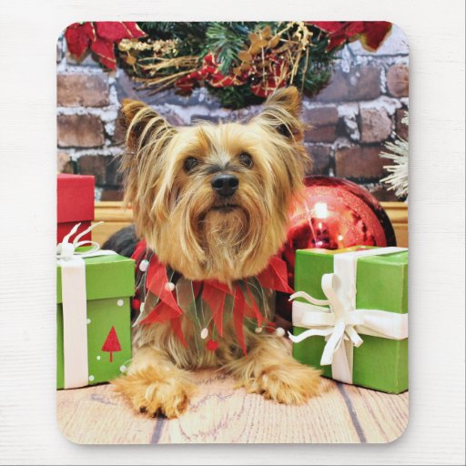 Christmas - Yorkie - Chloe Mousepad