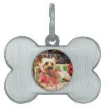 Christmas - Yorkie - Kinsey Pet Tag