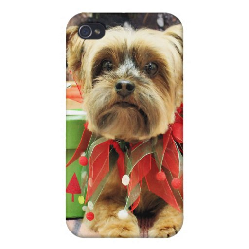 Christmas - Yorkie - Riley Case For iPhone 4