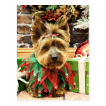 Christmas - Yorkie - Suzy Postcard