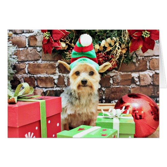 Christmas - Yorkie - Vinnie #32 Card
