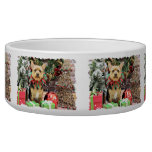 Christmas - Yorkie X - Little Bit Dog Bowl