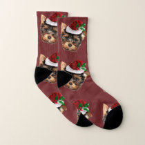 Christmas Yorkshire terrier puppy dog socks
