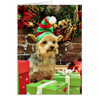 Christmas - Yorkshire Terrier - Vinnie Stationery Note Card