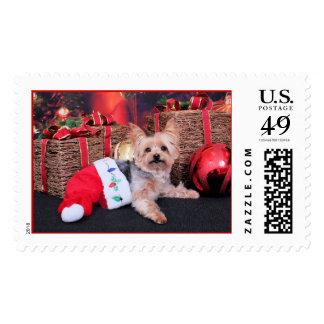 Christmas - Yorkshire Terrier - Vinnie Postage Stamp