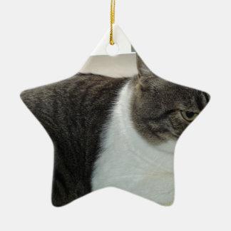 Christopher Ceramic Ornament