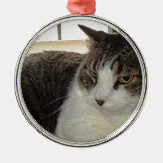 Christopher Metal Ornament