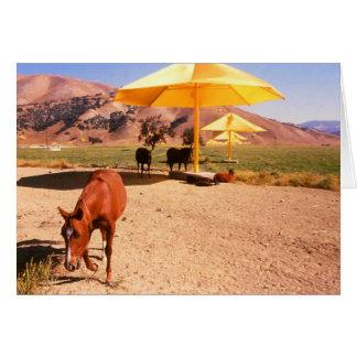 Christo's Umbrellas and horses Card