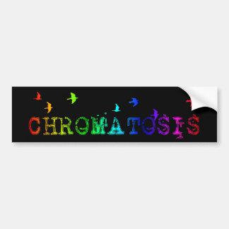 chromatosis : rainbow birds : car bumper sticker