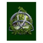 Chrome Celtic Trinity Knot Post Card
