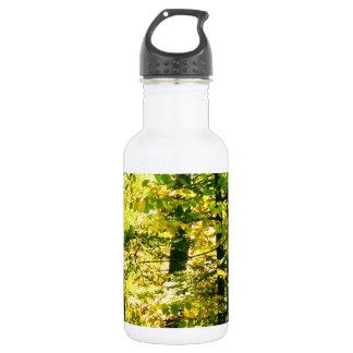 Chrome Leaves Water Bottle