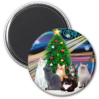 Chrstmas Magic - Six cats (variety) 2 Inch Round Magnet