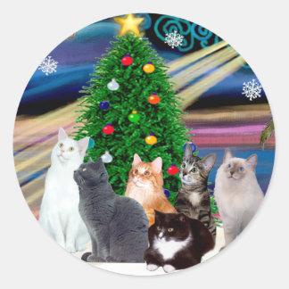 Chrstmas Magic - Six cats (variety) Classic Round Sticker