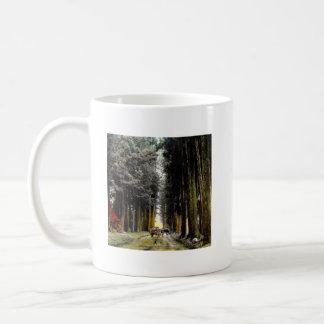 CHRYPTOMERIA AVE TAKAGI Glass Magic Lantern Slide Coffee Mug