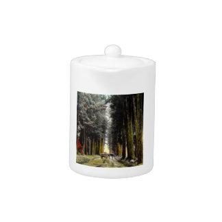 CHRYPTOMERIA AVE TAKAGI Glass Magic Lantern Slide Teapot