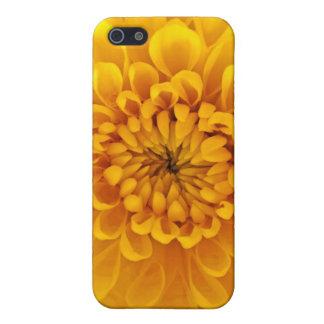 Chrysanhemum-themed iPhone 5 Case