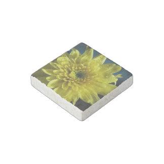 chrysanthemum-6.jpg stone magnet