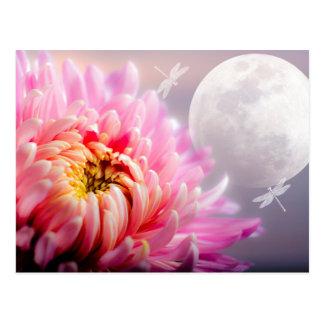Chrysanthemum and Moon Postcard