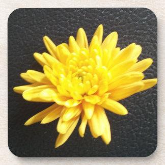 Chrysanthemum Beverage Coaster