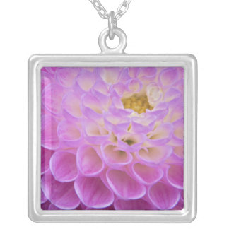 Chrysanthemum flower decorating grave site in square pendant necklace