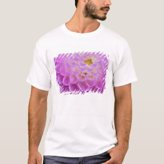 Chrysanthemum flower decorating grave site in T-Shirt