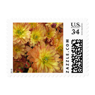Chrysanthemum Group Plant Yellow Red Postage Stamp