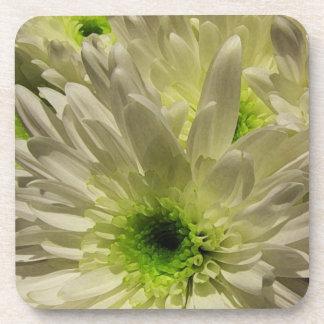 Chrysanthemum Petals Coaster