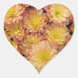 Chrysanthemum Plant Group Peach Stickers