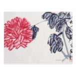 Chrysanthemum Postcard