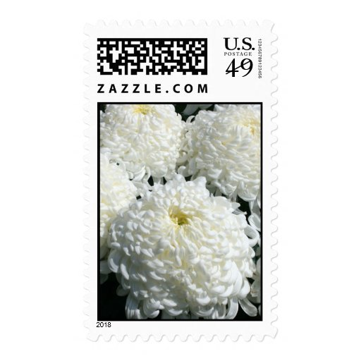 Chrysanthemum Stamps