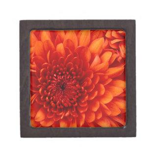 Chrysanthemum. Test Jewelry Box