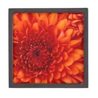 Chrysanthemum. Test Keepsake Box